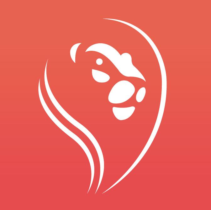aplicaciones-desarrollo-de-aplicaciones-civicar-logo